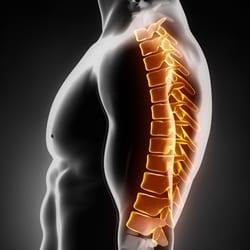 thoracic-spine-litmos