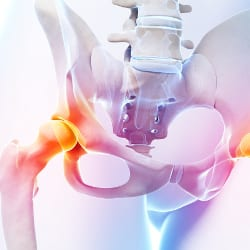 Clinical Examination And MSK Management of the Hip Anchorage May 2020